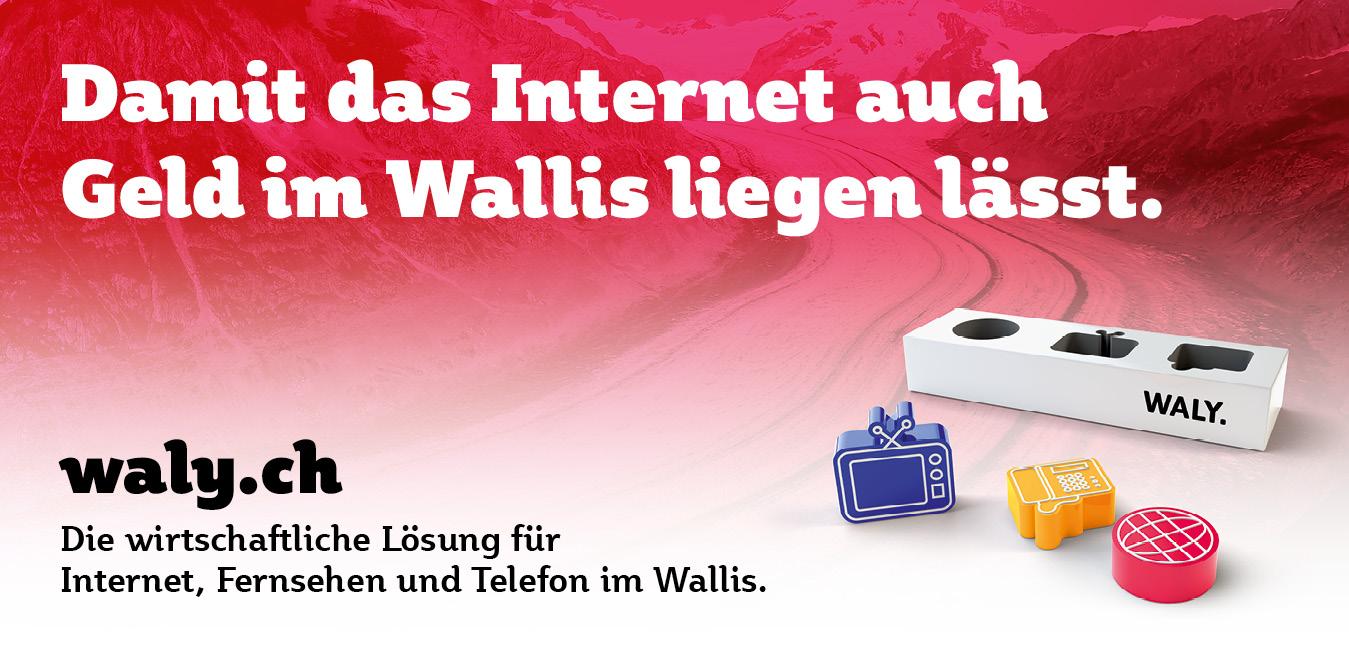 Wirtschaftlich: Plakat aus der Imagekampagne für waly.ch durch Werbeagentur Blitz & Donner, Bern