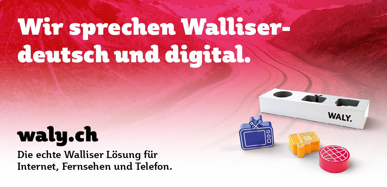 Wirtschaft: Plakat aus der Imagekampagne für waly.ch durch Werbeagentur Blitz & Donner, Bern