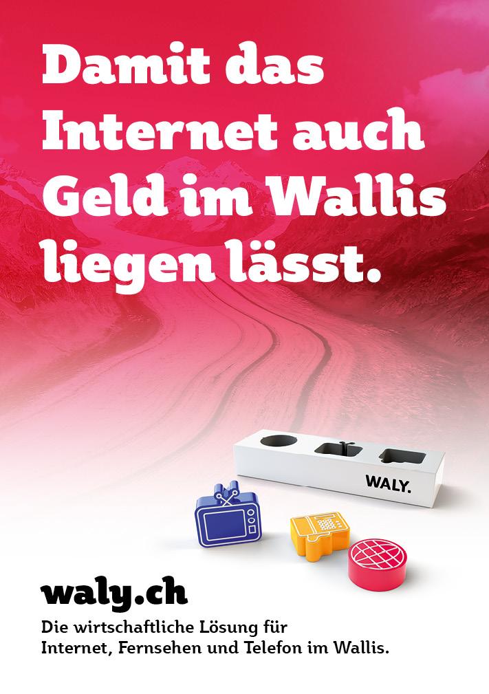 Geld: Plakat aus der Imagekampagne für waly.ch durch Werbeagentur Blitz & Donner, Bern