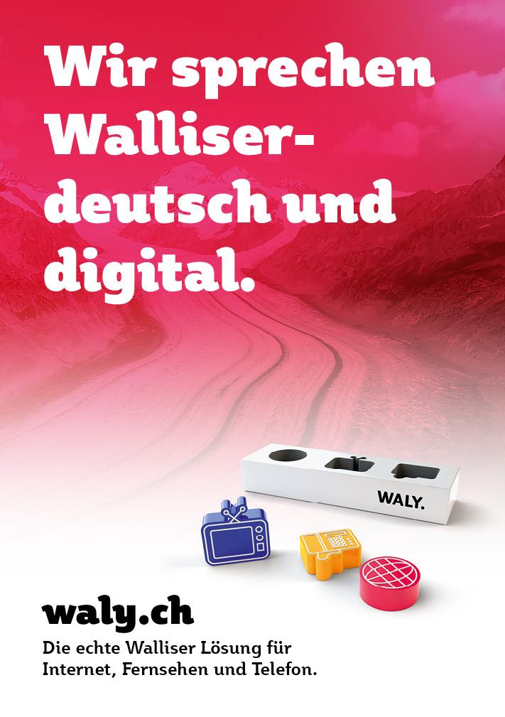 Mundart: Plakat aus der Imagekampagne für waly.ch durch Werbeagentur Blitz & Donner, Bern